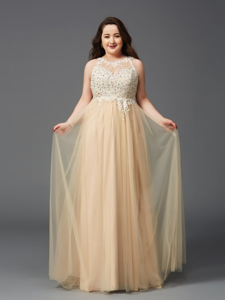 A-Line/Princess Scoop Rhinestone Long Net Plus Size Dress